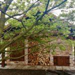 Drewno istara cegła